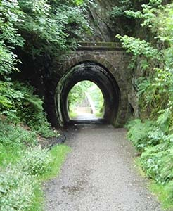 trail tunnel.jpg